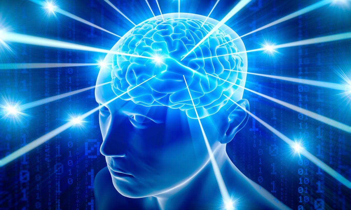 Cérebro humano recebendo novas informações